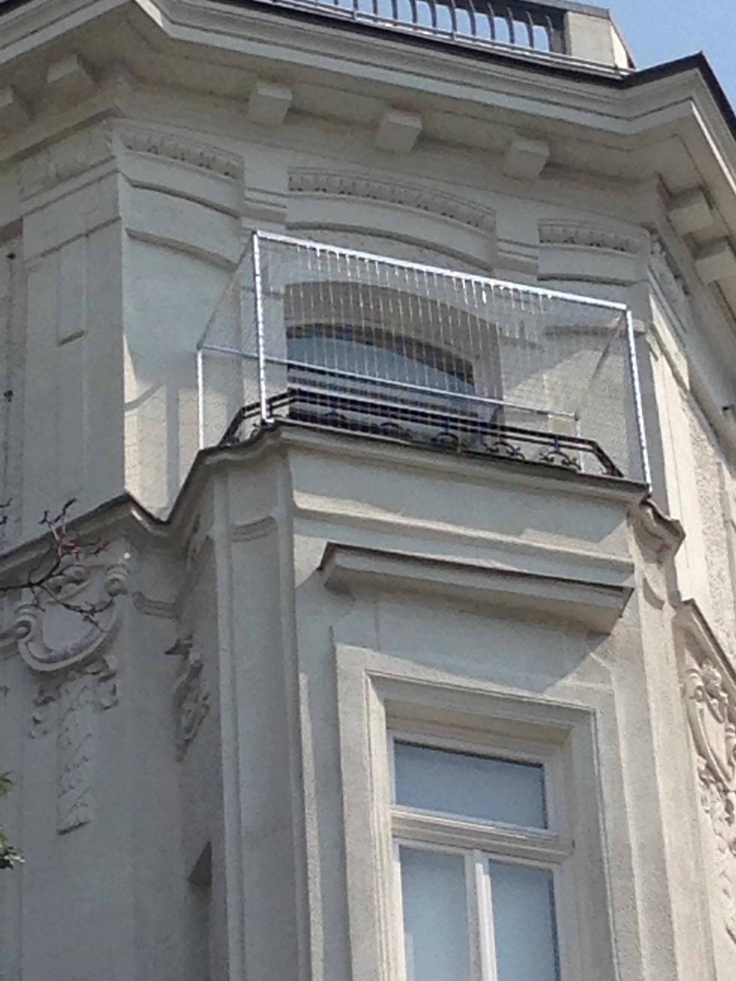 katzengitter f r loggia und balkon. Black Bedroom Furniture Sets. Home Design Ideas